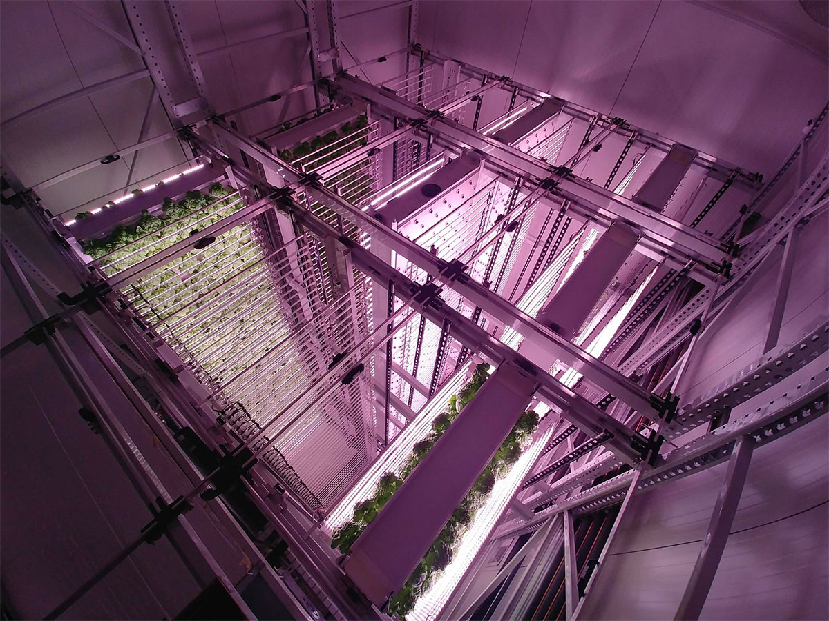 20210209vertical farm