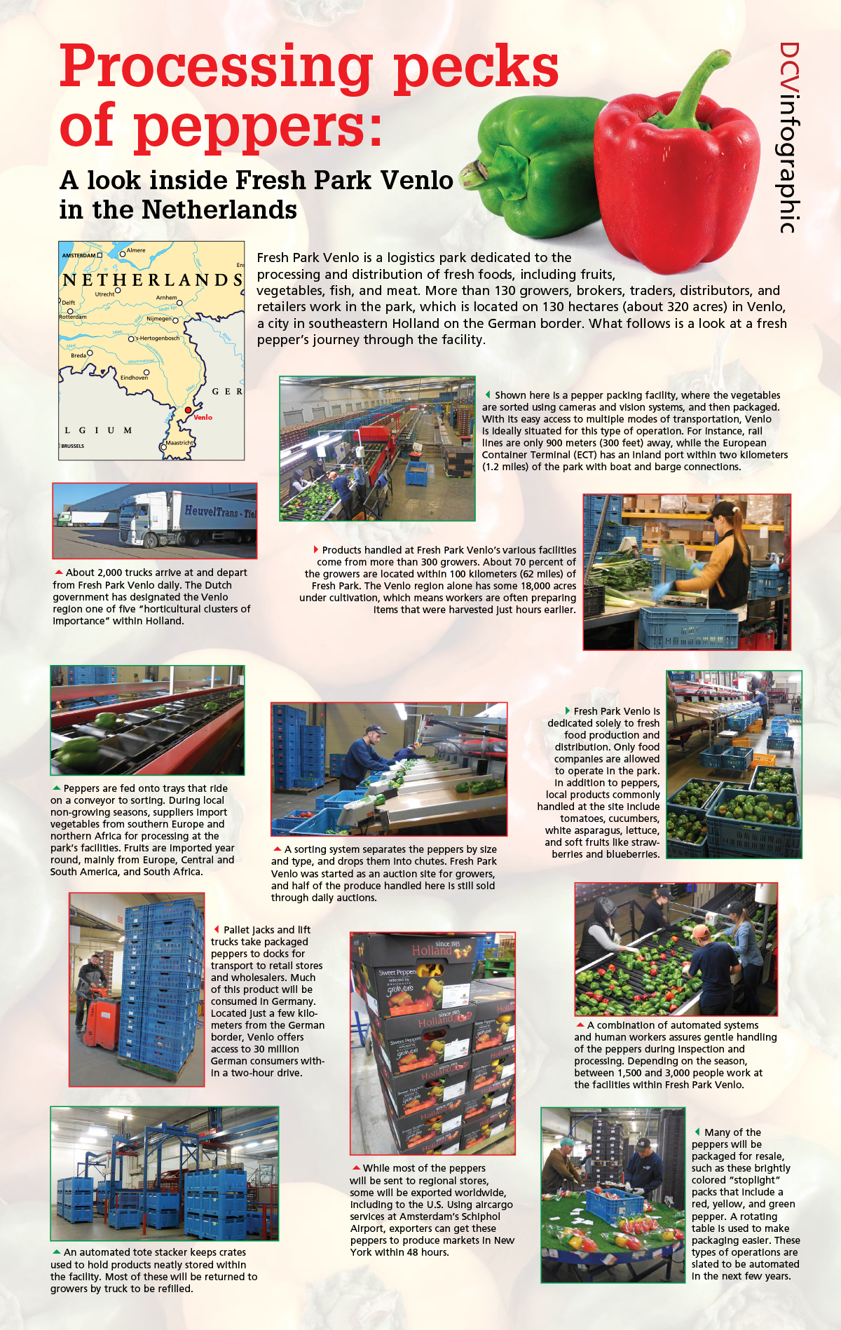 DCV Infographic: Processing pecks of peppers: A look inside Fresh Park Venlo in the Netherlands. This logistics park is dedicated to the processing and distribution of fresh foods. Here's is a look at a fresh pepper's journey through the facility.