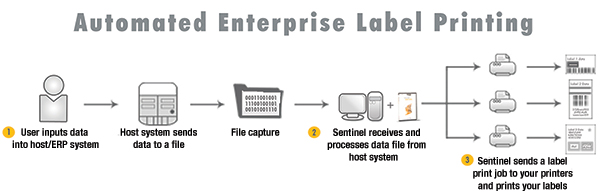 Flow chart showing Sentinel label printing automation works