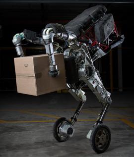 Handle robot