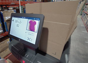 Robotic cart with screen