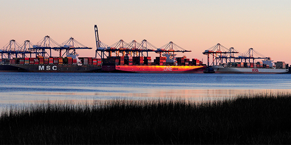 U.S. ports underpin hot economy with record volumes, rapid growth