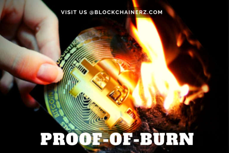 Wondering What On Earth Is Proof-of-Burn? Read This!
