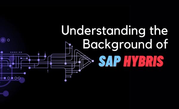 Understanding the Background of SAP Hybris