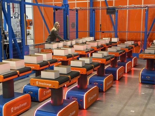GreyOrange Deploys Smart Zone Transfer Capabilities within Active Ants' Netherlands Warehouse