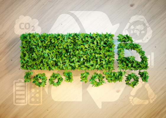 Redwood Logistics Recognized for Sustainability Efforts,  Reducing Environmental Impact